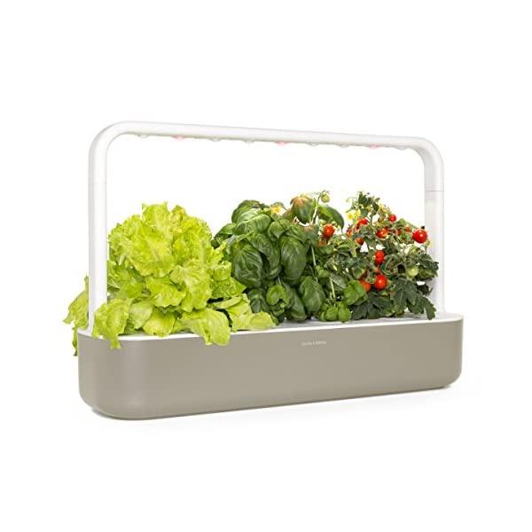 click-grow-smart-garden-9