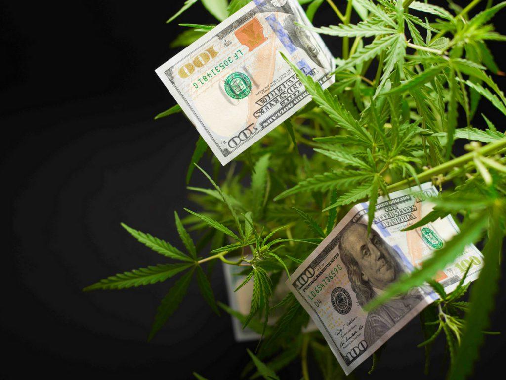 Grow Room Cost Calculator