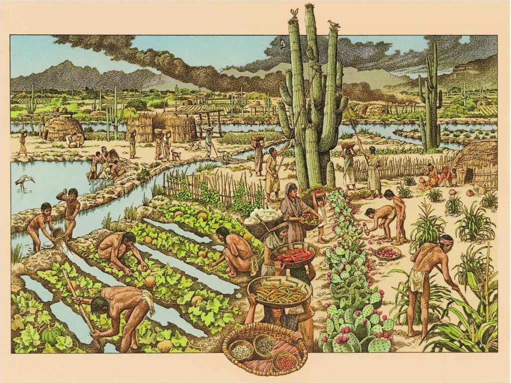 History of Irrigation