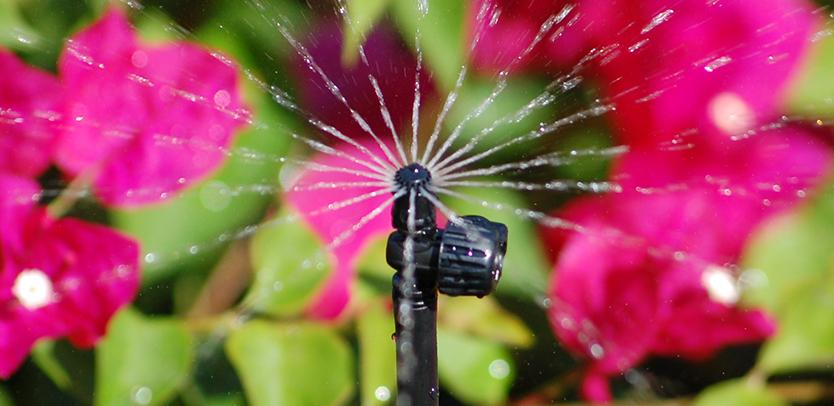 Micro-Spray Sprinklers
