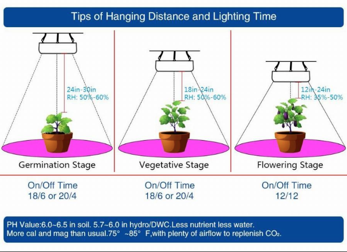 Distance Between LED Grow Lights And Different Stages Of Growth-2