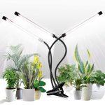 Best Mini Grow Lights For Indoor Plants